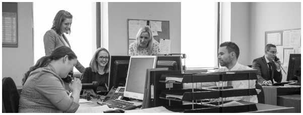 Pearts Staff working in the office